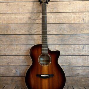 E-Acoustic & Western Gitarren